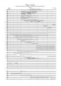 Ostny v závoji I. - Full Score-page-001